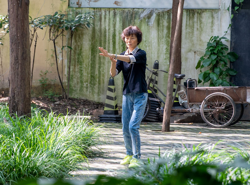 Tai Chi Chuan practice among trees and plants, solo
